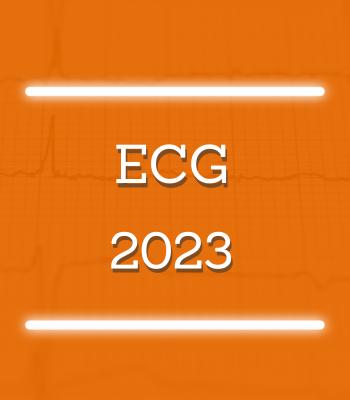 img_vit_6.png